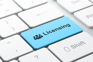 License Protection Services